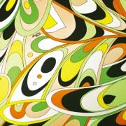 PAROLARI EMILIO PUCCI ストレッチオレンジ×グリーン(PE-6-8315)