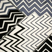 PAROLARI EMILIO PUCCI ストレッチブルーグレー×ホワイト×ブラック(PE-37-12302)