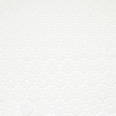 ホワイトレース/(kkf6784) White Lace